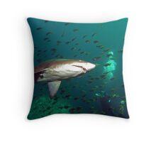 Grey Nurse Shark and Diver Throw Pillow