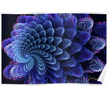 Colorful Swirling Shells Poster