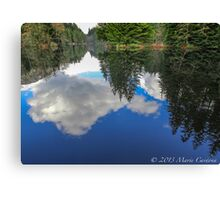 Mirror Mirror On the Water Canvas Print
