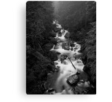 Mount Rainier National Park - Water in BW Canvas Print