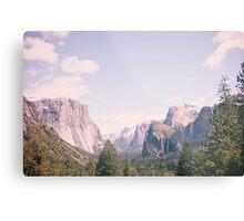 Yosemite beauty Metal Print
