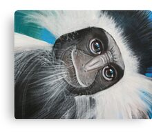 Colobus Monkey (detail 'Jungle Animals' painting) Canvas Print