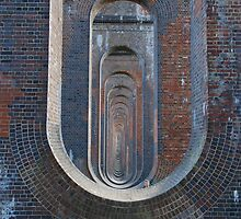 Under the Balcombe Ouse Valley Viaduct by Barry Goble