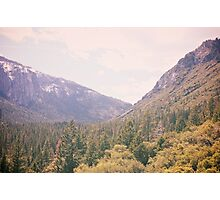 Yosemite forest Photographic Print