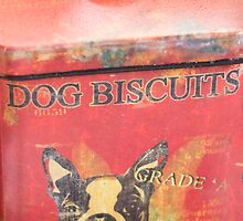 Dog Biscuits by Diego Re