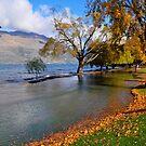 Lake Wakatipu by Peter Hammer