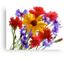 summer flowers: heliopsis, blue cornfolwers and pink carnations Canvas Print