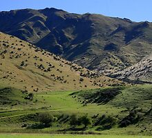 From High Country To Downlands by coffeebean