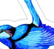 'Blue Wren' Sticker