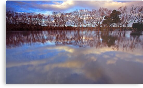 """""""Reflections at Evandale"""" by Husky"""