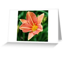 Lily in the Garden Greeting Card