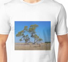 The Tree and the Barn, Cape Jaffa, South Australia Unisex T-Shirt