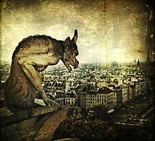 The Watcher by Lynn Benson