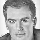 Michael Weatherly aka DiNozzo by Karen Townsend