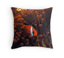 Orange Anemome and Fish Throw Pillow