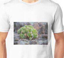 Lonely Cacti Unisex T-Shirt