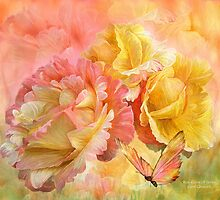 Rose - Colors Of Spring by Carol  Cavalaris
