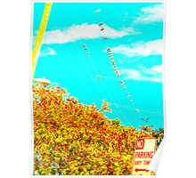 birds on a wire in color Poster