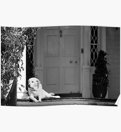 Home Sweet Home - Black and White Series Poster