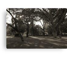 Inner City Parkland - Black & White Canvas Print
