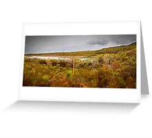 Panorama - Honey Eater Lake Greeting Card