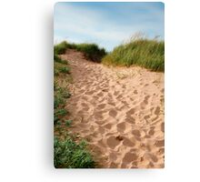 Show Me The Way 2 Canvas Print