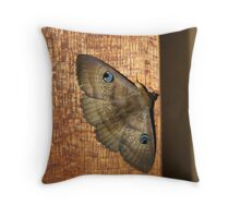 Sleeping Moth Throw Pillow