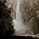 Lower Yosemite Falls by Phillip M. Burrow