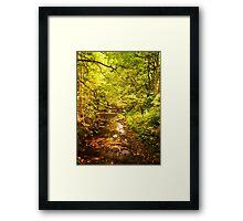 Dappled Framed Print