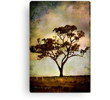 Earth's poetry Canvas Print