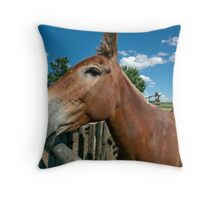 Mule From 1880 Town Throw Pillow