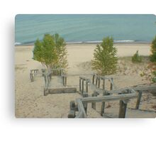 Sand or Sandy Stairs? Canvas Print