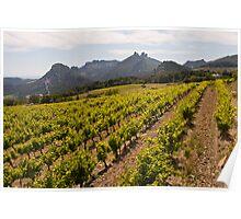 Cote du Rhone Wine Trail Poster