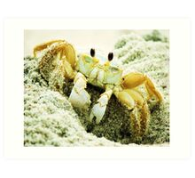 Beach Crabs Art Print