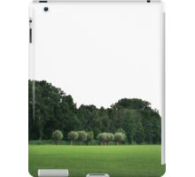 Willows in Dutch landscape iPad Case/Skin