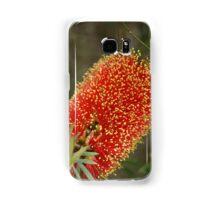 Calistemon- Red Bottle Brush flower Samsung Galaxy Case/Skin