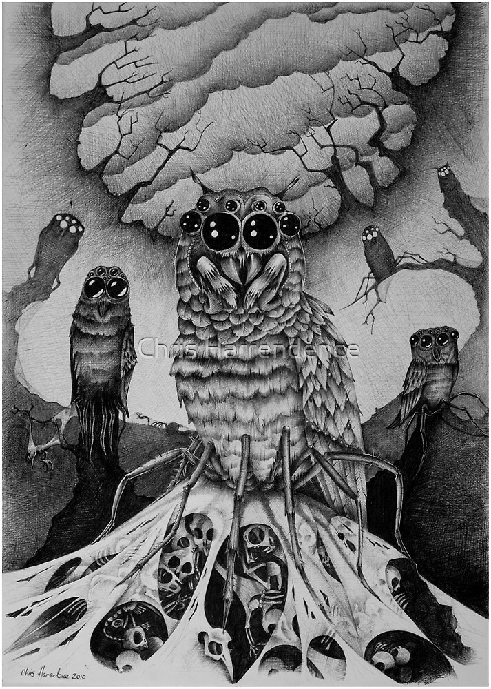 The Lair of the Spiderowl by Chris Harrendence