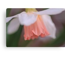 peachie  Canvas Print