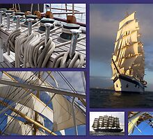 A Sailing collage by Nancy Richard