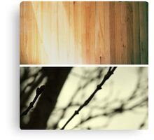 after and before Canvas Print