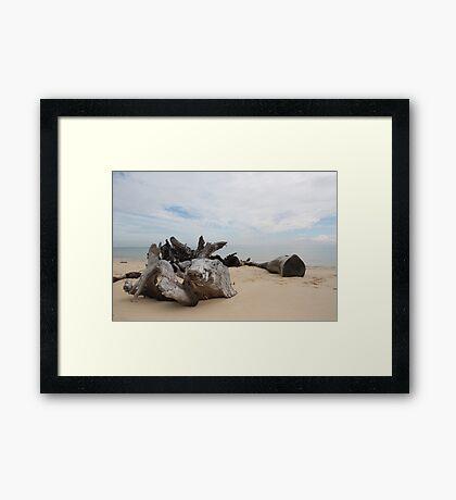 Beach View - Moreton Island Framed Print