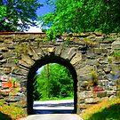 Stone Bridge by Debbie Robbins
