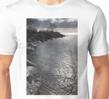 Liquid Silver Sunrise Unisex T-Shirt