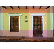 door_window Photographic Print