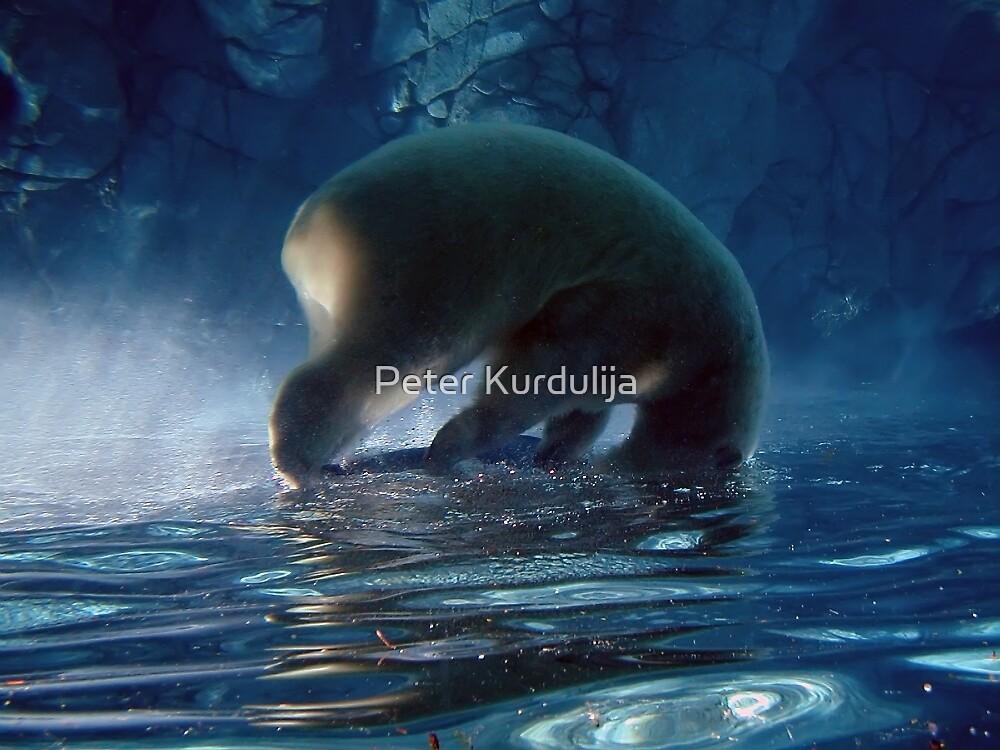 Dreaming in Blue by Peter Kurdulija