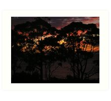 Sunset on Chipping Norton Lakes, NSW, Australia Art Print