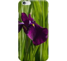 Sunny Green and Purple Summer iPhone Case/Skin
