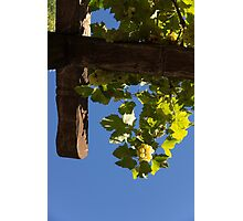 Harvest in the Sky - a Vertical View Photographic Print