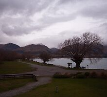 Lake Wakatipu foreshore at Kinloch, NZ by Odille Esmonde-Morgan