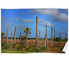 Nature's Destruction:  Aftermath of a Hurricane ( best viewed larger)  Poster